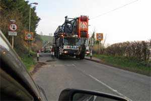 Crane Leaving Axmouth Village